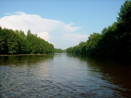 "В реке ""Бузулук"" утонул мужчина"