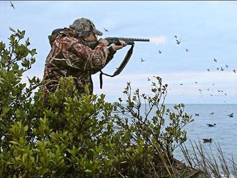 Житель Кувандыка на охоте подстрелил товарища