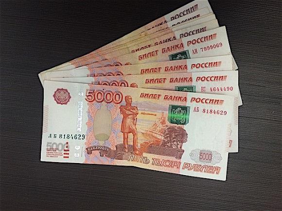 """На свиноферме """"Вишневский"""" выявлено хищение 50 миллионов рублей"""