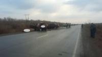 В Гайском районе произошло ДТП: 4 человека погибли