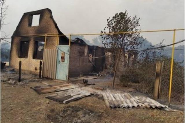 В Ташлинском районе введен режим ЧС из-за лесного пожара